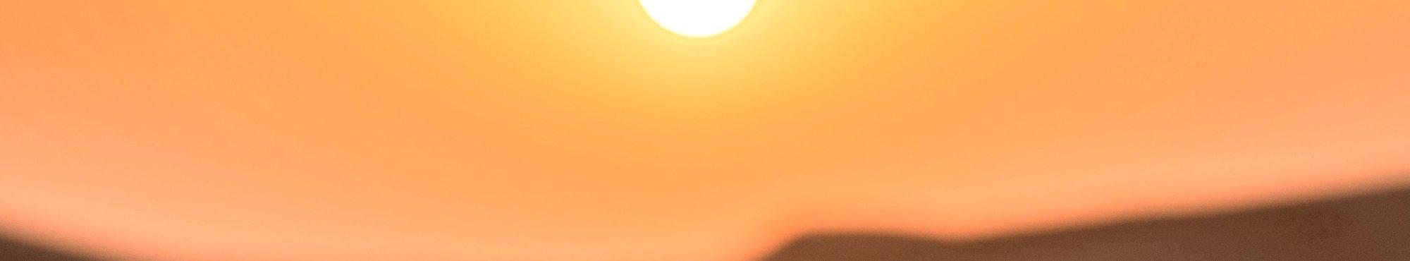 occhiali sole intro